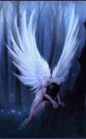 (http://edenlalu.e.d.pic.centerblog.net/o/34f0b385.jpg) Un ange déchu perdu dans